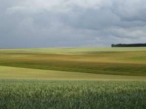 Somme, 1st July 2014