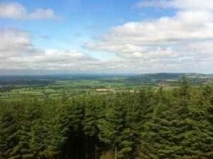 Midland landscape